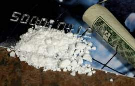 Learn How to Use the DEA Website