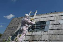 Asbestos Strategies Project
