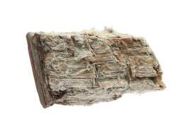 Asbestos Facts To Know