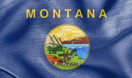 The State Laws of Montana