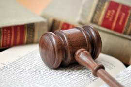 Judicial Interpretation & Common Law