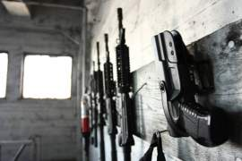 Semi Automatic Rifle Quick Overview