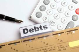 Finding the Best Debt Management Plan