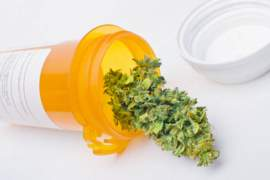 Quick Overview on Medicinal Marijuana