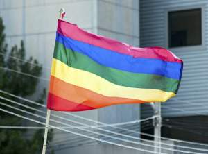 New Polls Show Growing Momentum for Gay Marriage in Virginia, Michigan and Arizona