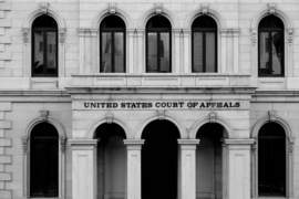 The Board of Immigration Appeals