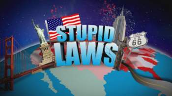 Different Types Of Stupid Laws