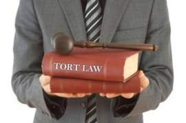 A Brief Overview of Tort Law